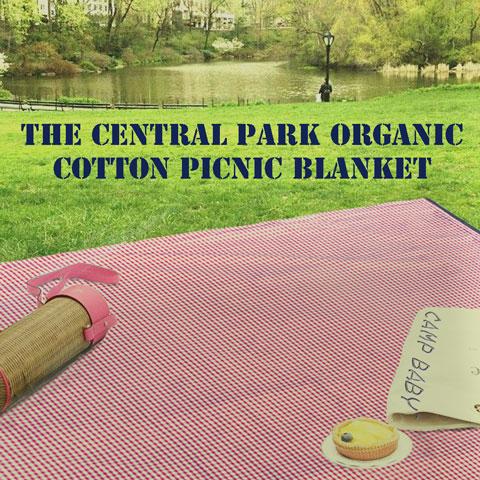 central-park-picnic-blanket
